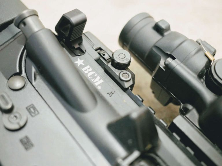 "BCM 20"" government and TA-110 ACOG"